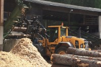Sägewerk Ortner Abfaltersbach - Resthölzer
